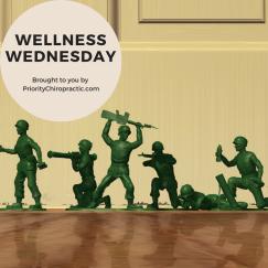 Wellness Wednesday army